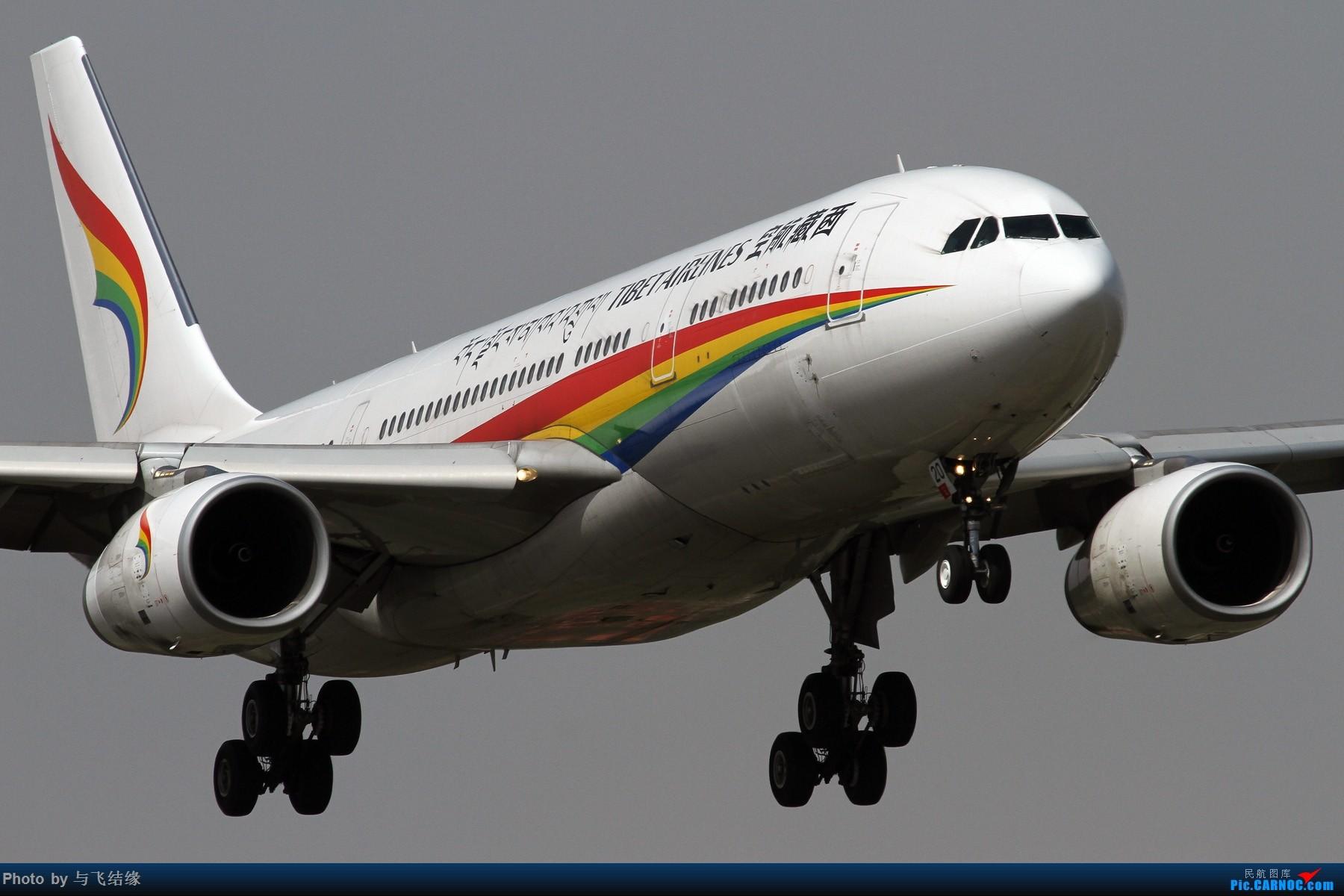 西藏航空Airbus A330-200,B-8420组图。 AIRBUS A330-200 B-8420 中国北京首都国际机场