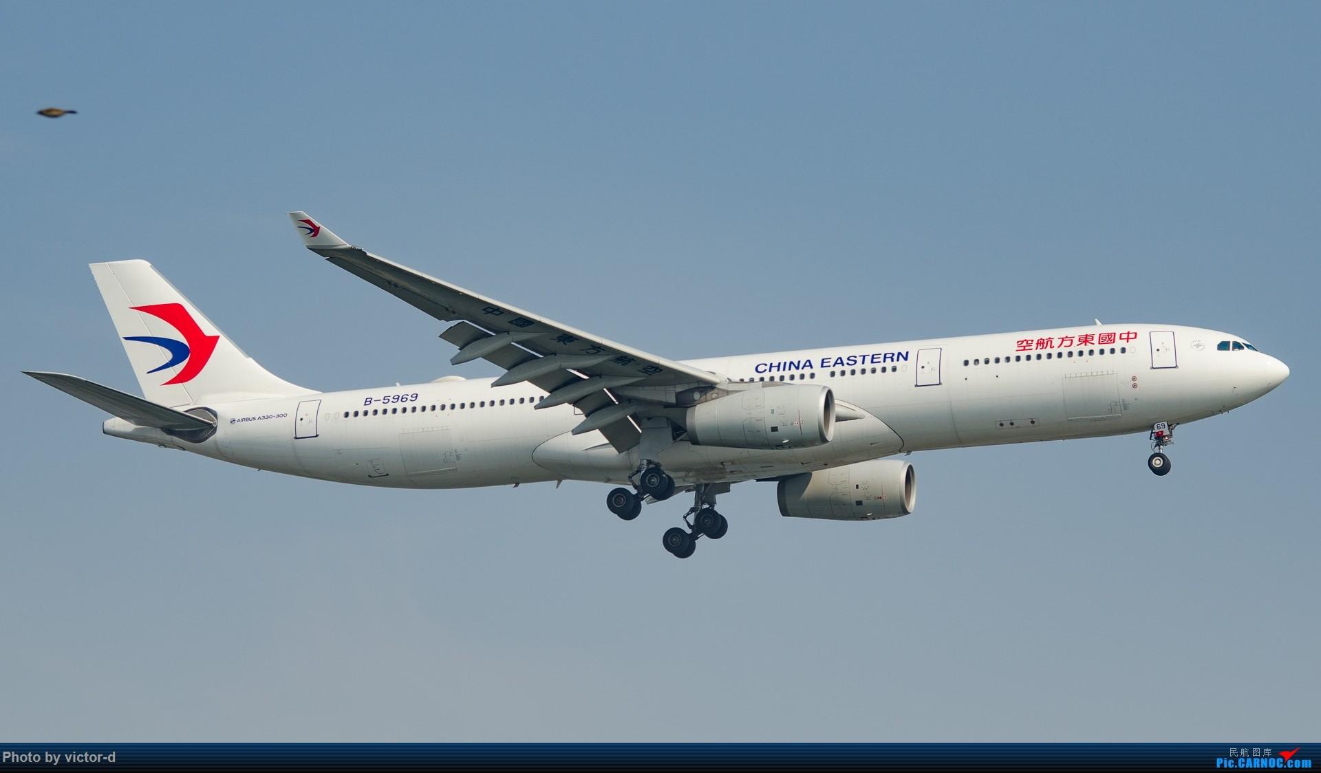 Re:[原创]【上海飞友会】拍机记录帖-记录这些年拍到的飞机-不定期更新 AIRBUS A330-300 B-5969 中国上海虹桥国际机场