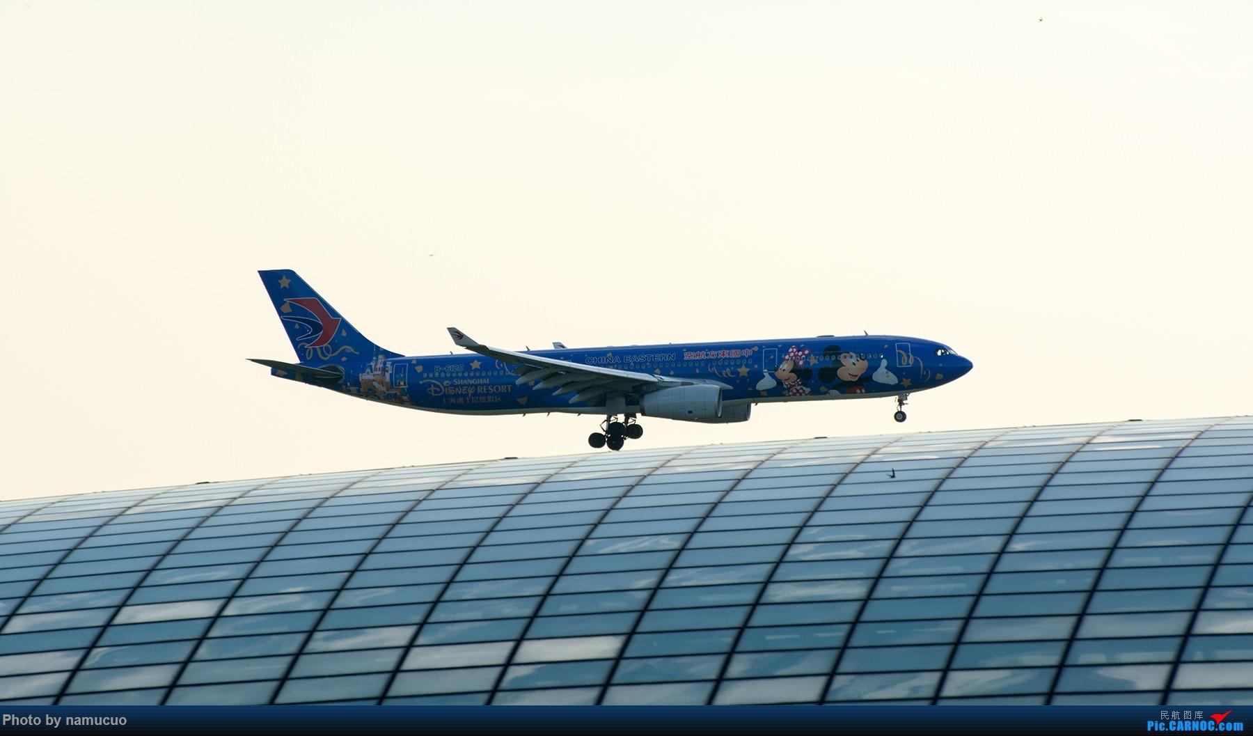 Re:[原创]【PEK】【专题】降落在穹顶之上(二)这次没有柳絮 AIRBUS A330-300 B-6120