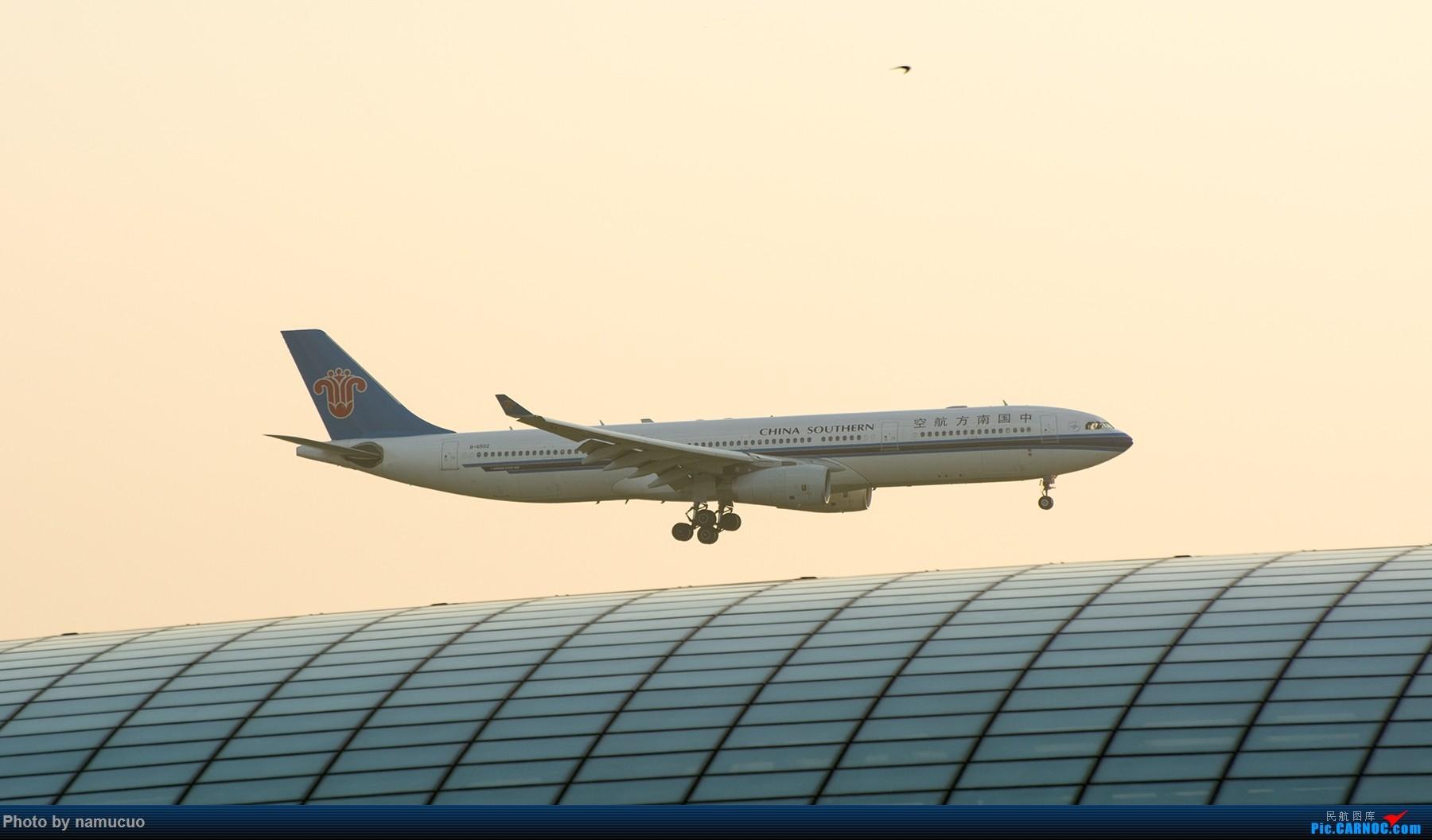Re:[原创]【PEK】【专题】降落在穹顶之上(二)这次没有柳絮 AIRBUS A330-300 B-6502