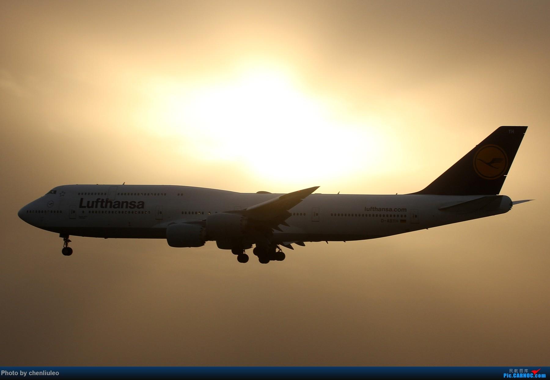 Re:[原创]【北美飞友会】芝加哥奥黑尔机场首拍 BOEING 747-8I D-ABYH 美国芝加哥奥黑尔国际机场