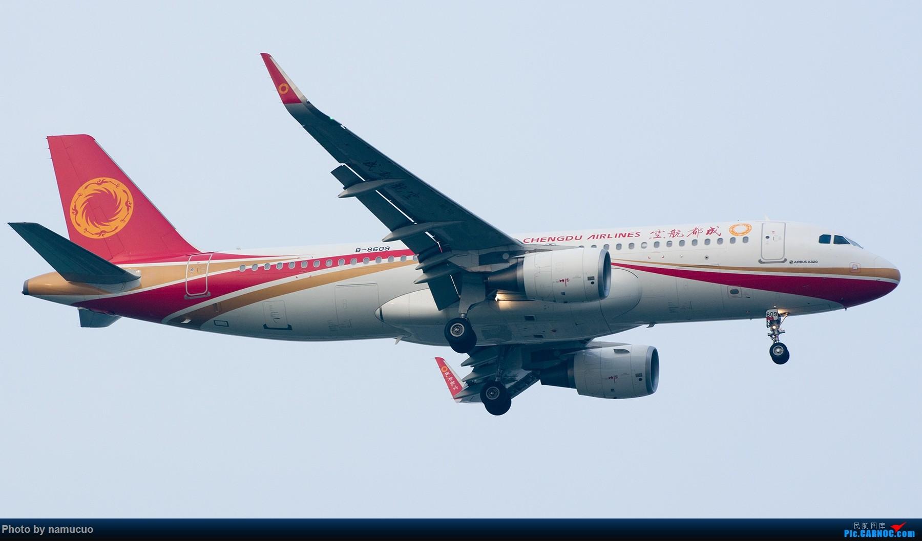 Re:[原创]【TSN】端午黄昏等拍一小时,12架,各有各的色彩也算收获吧 AIRBUS A320-200 B-8609
