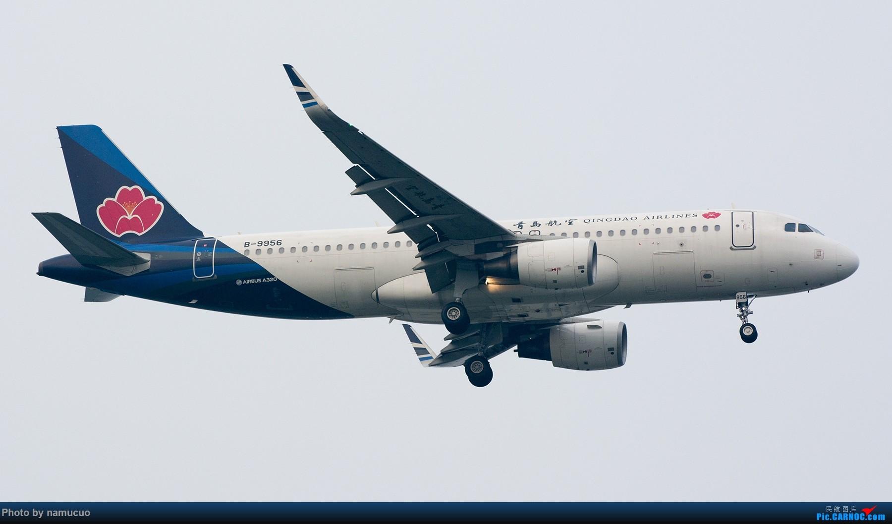 Re:[原创]【TSN】端午黄昏等拍一小时,12架,各有各的色彩也算收获吧 AIRBUS A320-200 B-9956
