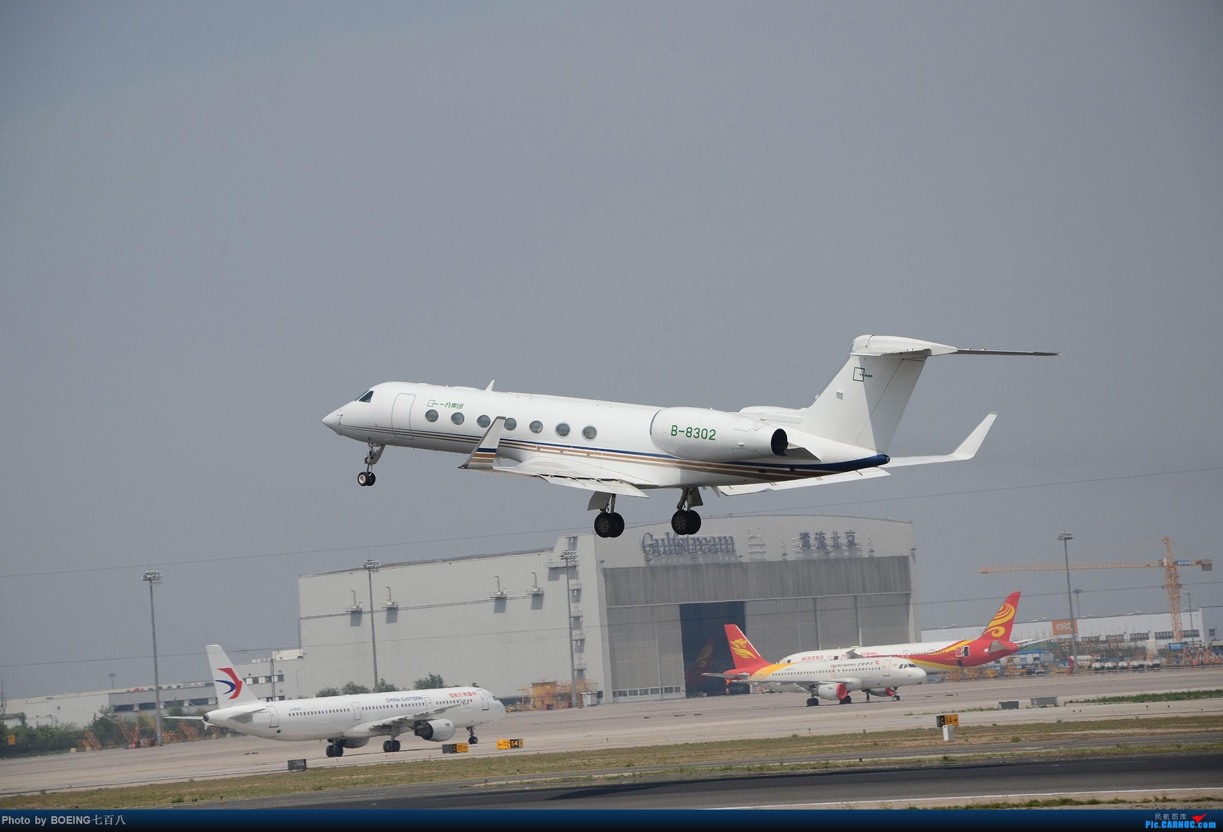 Re:[原创]海航家的黄焖熊猫和清蒸熊猫等好货 GULFSTREAM G550 B-8302 中国北京首都国际机场