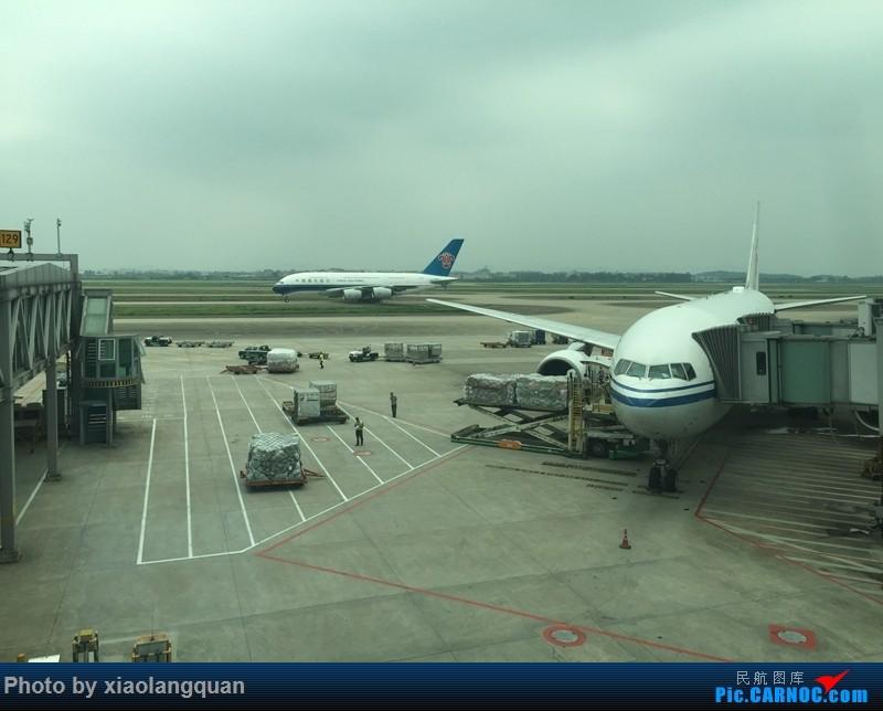 Re:[原创]CAN-PEK-GMP-PUS-PEK-CAN非常时期韩国之行全程擦航承运by772,738,77W AIRBUS A380 B-6139 中国广州白云国际机场