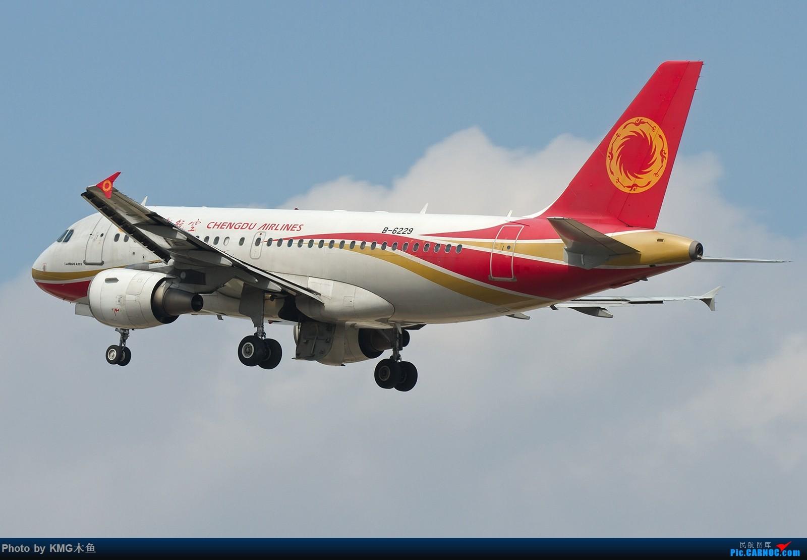 Re:[原创]【昆明长水国际机场——KMG木鱼拍机】向着功勋级出发,把库存图拿出来发了(高清大图) AIRBUS A319-100 B-6229 中国昆明长水国际机场