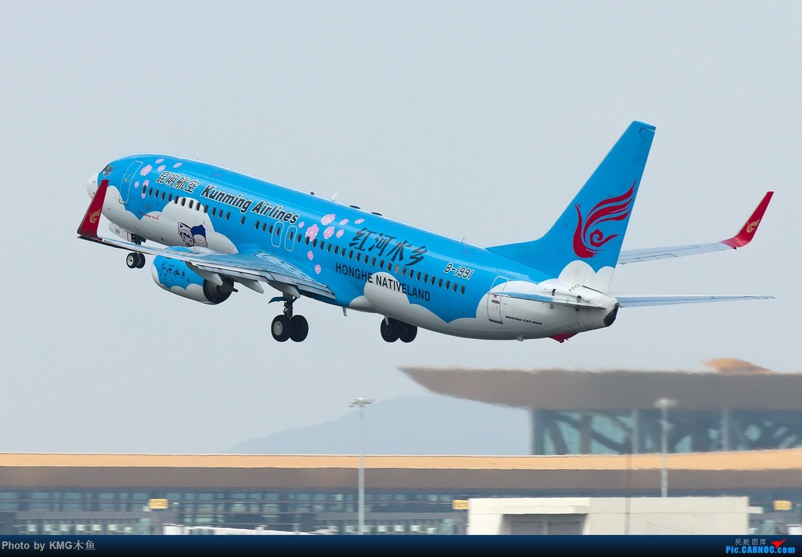 Re:[原创]【昆明长水国际机场——KMG木鱼拍机】向着功勋级出发,把库存图拿出来发了(高清大图) BOEING 737-800 B-1991 中国昆明长水国际机场