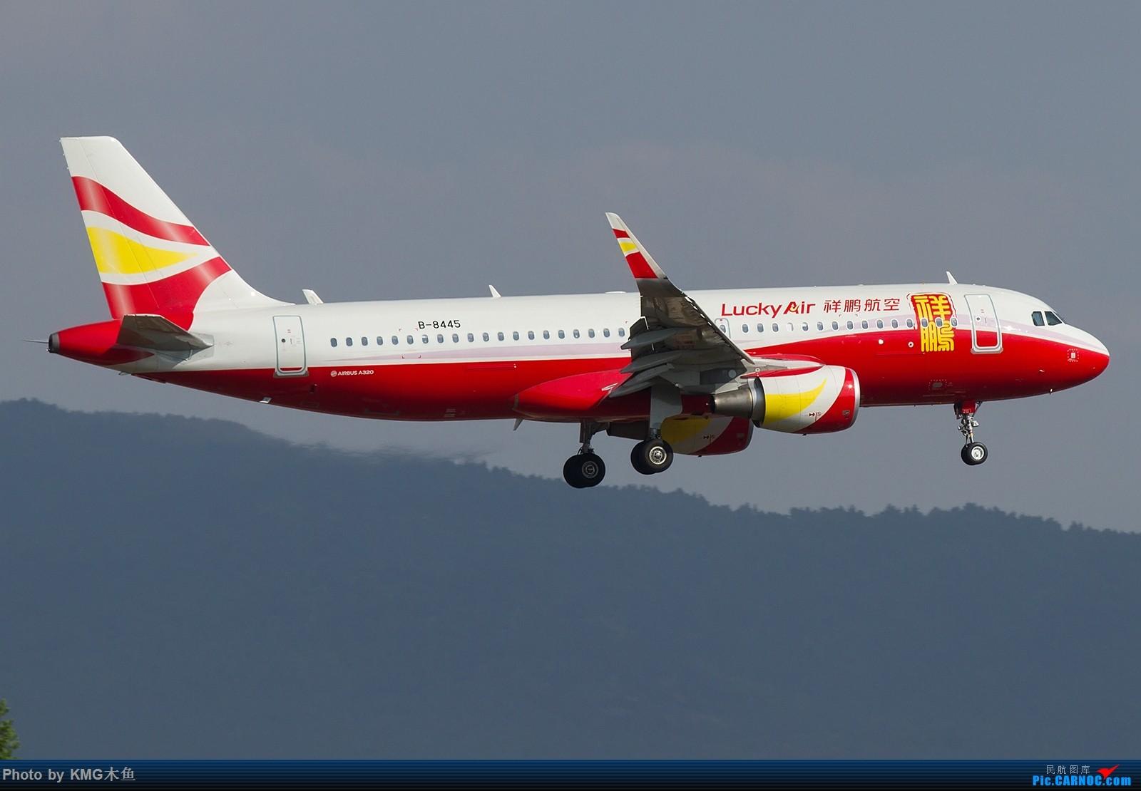 Re:[原创]【昆明长水国际机场——KMG木鱼拍机】向着功勋级出发,把库存图拿出来发了(高清大图) AIRBUS A320-200 B-8445 中国昆明长水国际机场