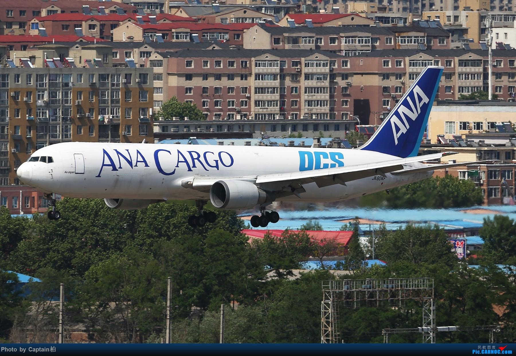 大连随拍 BOEING 767-300 JA604F 中国大连国际机场