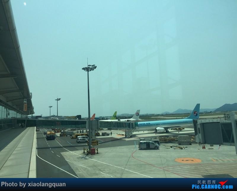 Re:[原创]CAN-PEK-GMP-PUS-PEK-CAN非常时期韩国之行全程擦航承运by772,738,77W(更新中)    韩国釜山金海国际机场