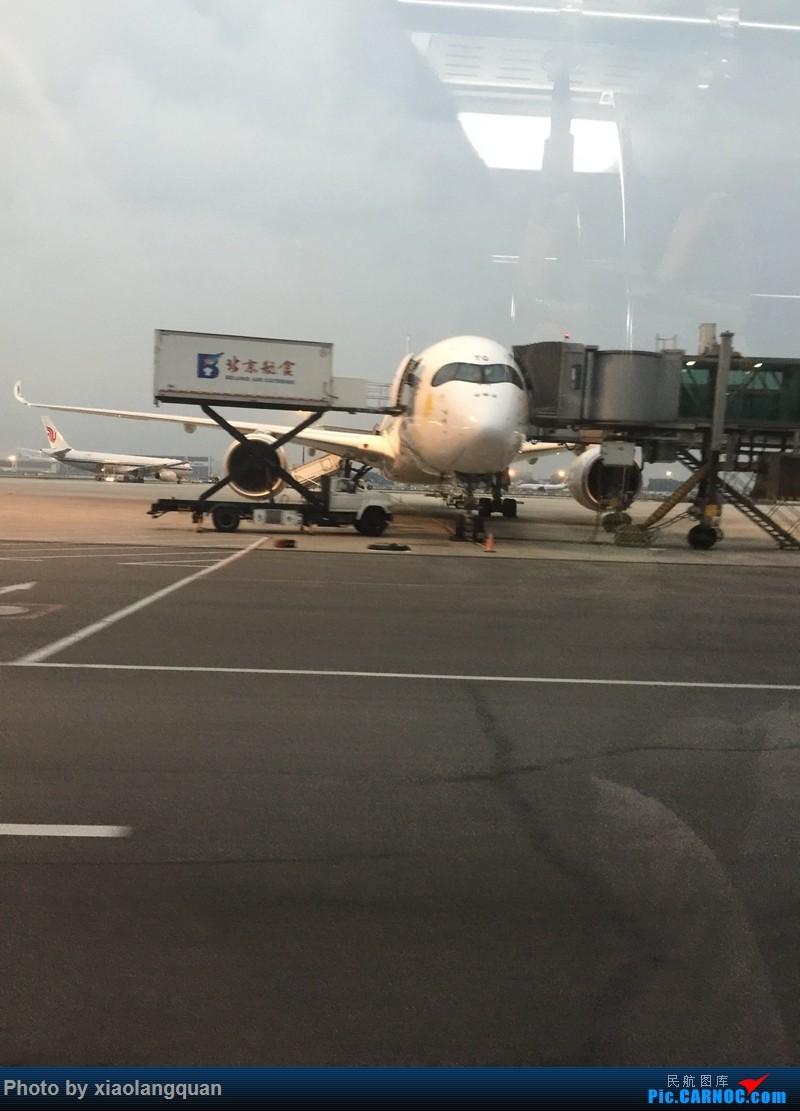 Re:[原创]CAN-PEK-GMP-PUS-PEK-CAN非常时期韩国之行全程擦航承运by772,738,77W(更新中) AIRBUS A350-900  中国北京首都国际机场