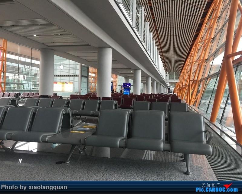 Re:[原创]CAN-PEK-GMP-PUS-PEK-CAN非常时期韩国之行全程擦航承运by772,738,77W(更新中)    中国北京首都国际机场