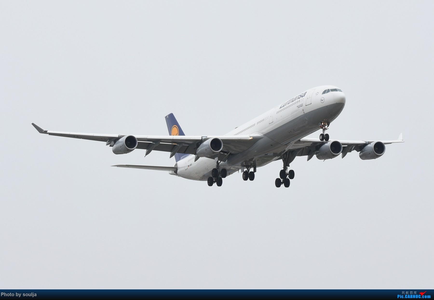 Re:[原创]6月10日刘婷,第一次拍到红港龙 A343