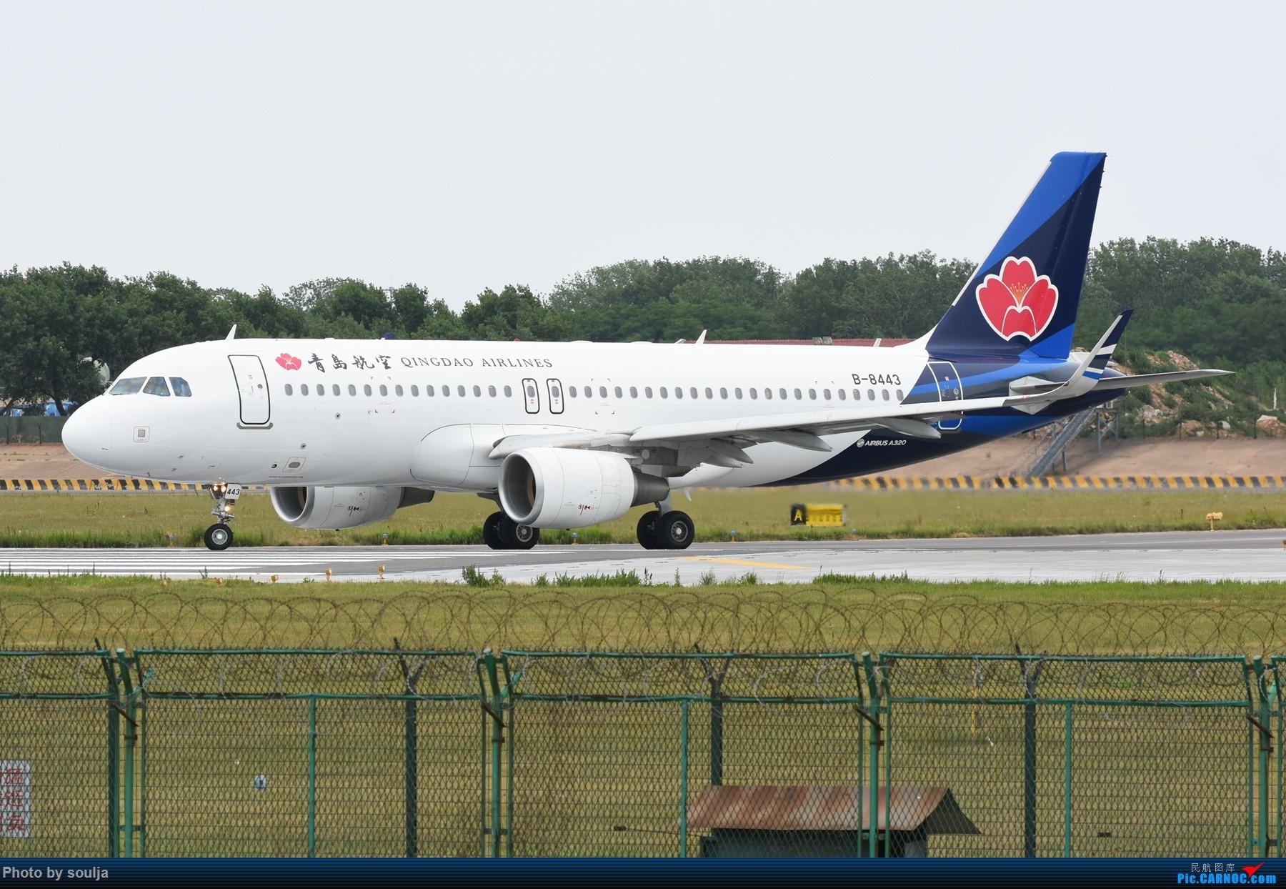 Re:[原创]6月10日刘婷,第一次拍到红港龙 A320