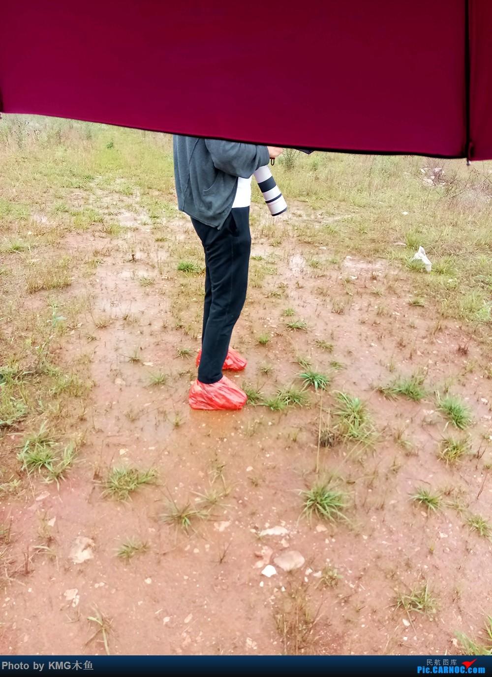 Re:Re:[原创]【昆明长水国际机场——KMG木鱼拍机】昆明接二连三的阴雨天,形成了好货烂天有,烂天必有好货的奇特现象