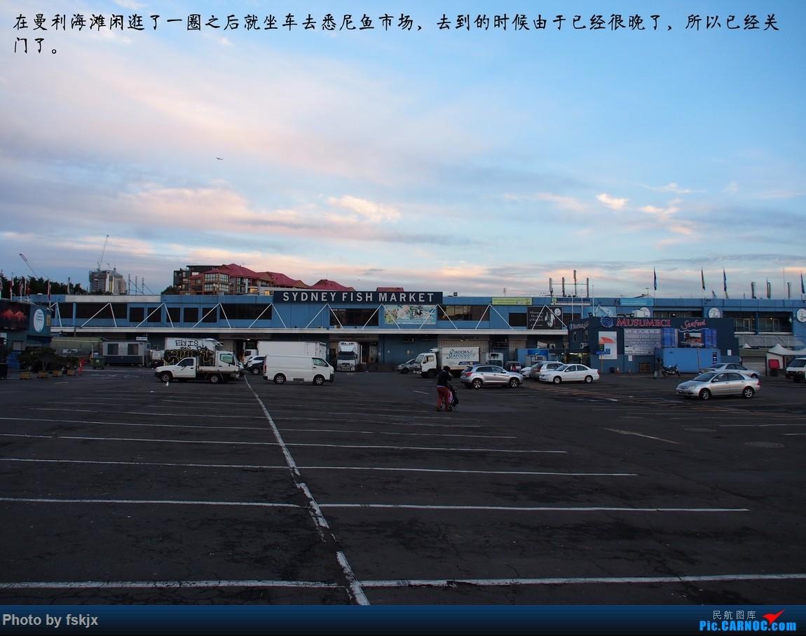 【fskjx的飞行游记☆50】为了一刹那的遇见·悉尼·奥克兰 DE HAVILLAN CANADA DHC-2 VH-SWB