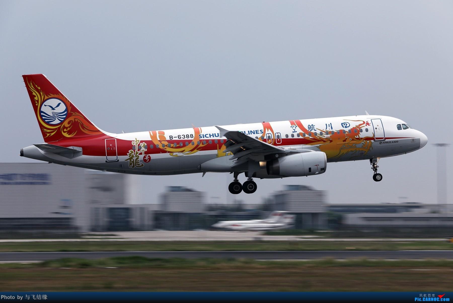 """[原创]四川航空从新喷涂的""""中华龙""""号彩绘Airbus A320-200 AIRBUS A320-200 B-6388 中国北京首都国际机场"""