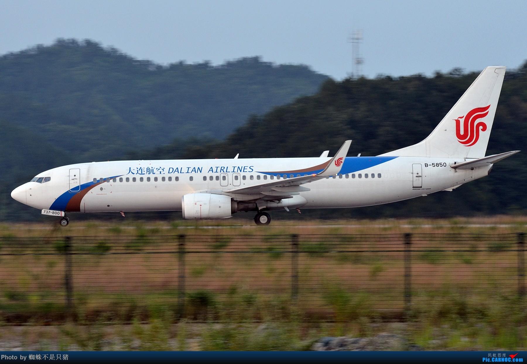 Re:[原创]十堰武当山机场 少见的还在坚守的运-5以及一些杂图 BOEING 737-800 B-5850 中国十堰武当山机场