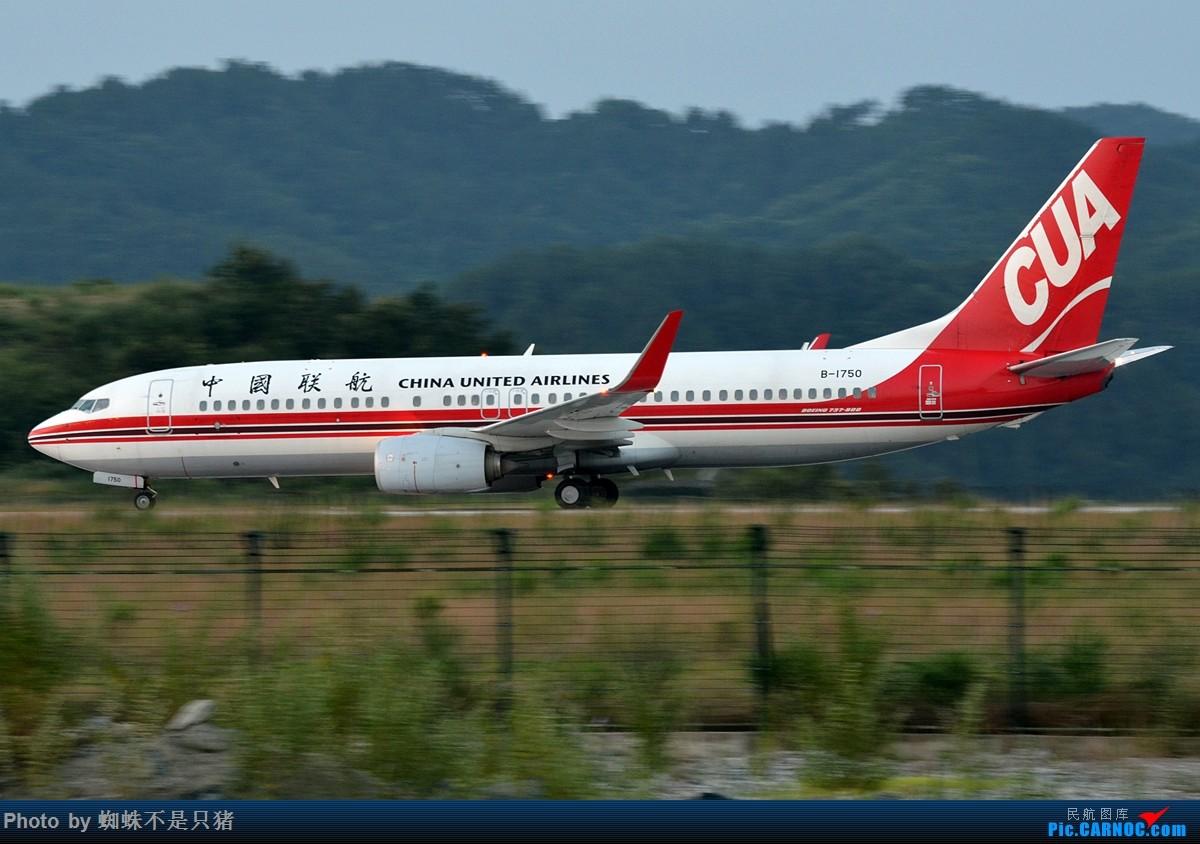 Re:[原创]十堰武当山机场 少见的还在坚守的运-5以及一些杂图 BOEING 737-800 B-1750 中国十堰武当山机场