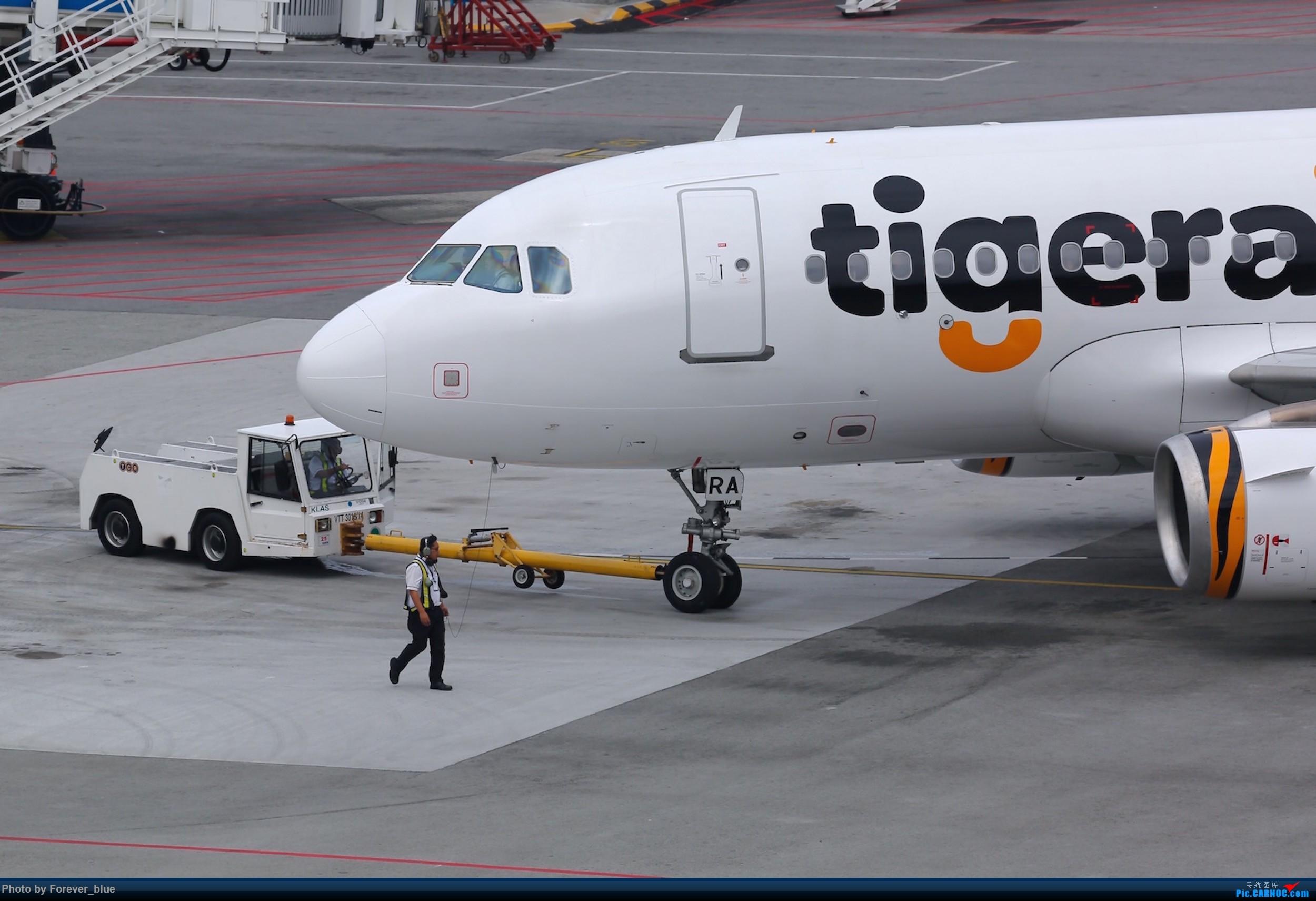 新加坡虎航机头特写