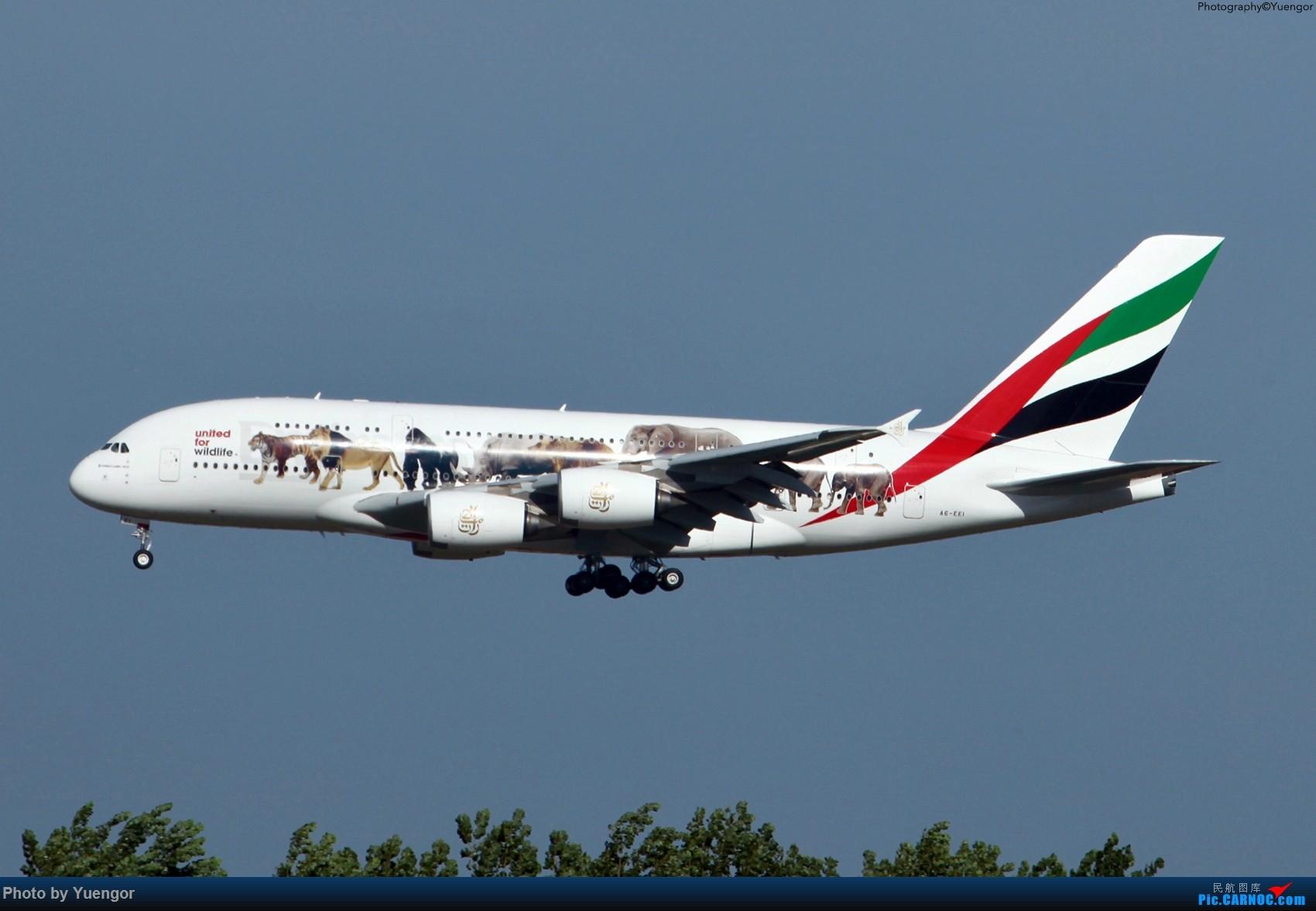Re:[原创]【兰州飞友会】08.2016 LHW-PEK-AUH-MSQ 暑期返村 AIRBUS A380 A6-EEI 中国北京首都国际机场