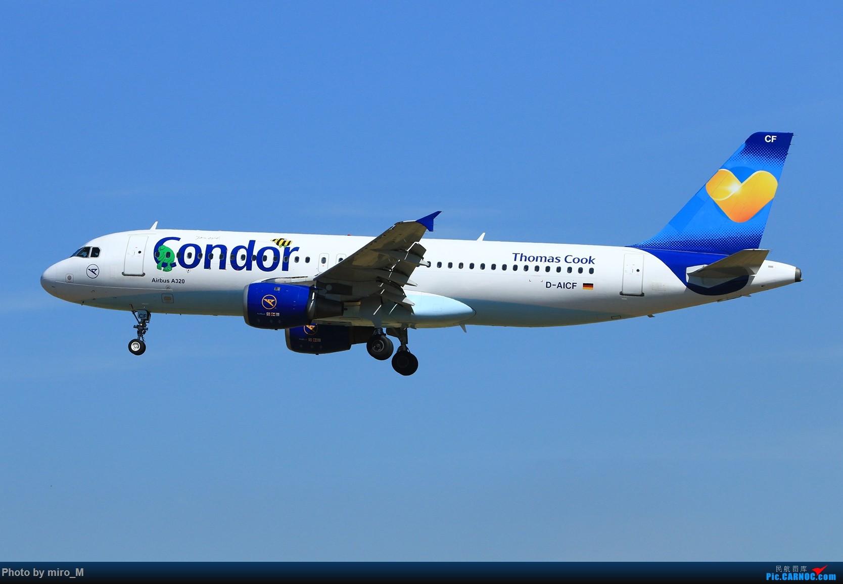 Re:[原创]欧洲浪了一圈,CS100,BAE146,fokker70等新老机型串着飞+ZRH,MUC,FRA,AMS,TLS拍机 AIRBUS A320-200 D-AICF FRA