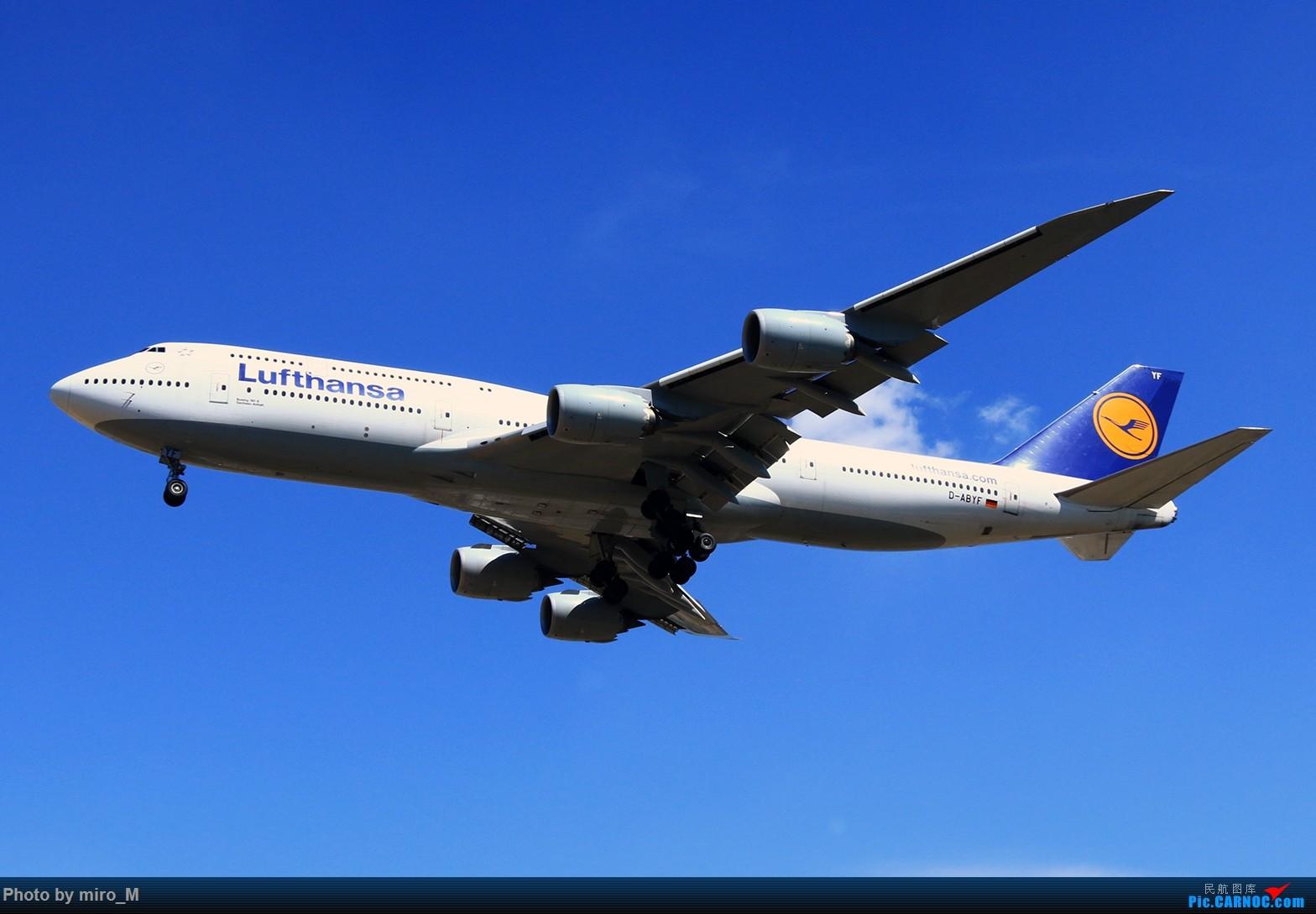 Re:[原创]欧洲浪了一圈,CS100,BAE146,fokker70等新老机型串着飞+ZRH,MUC,FRA,AMS,TLS拍机 BOEING 747-8 D-ABYF FRA