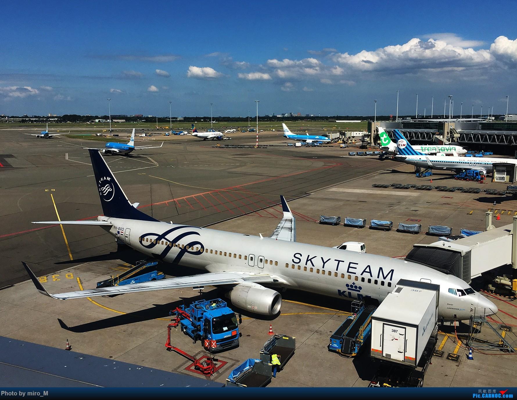 Re:[原创]欧洲浪了一圈,CS100,BAE146,fokker70等新老机型串着飞+ZRH,MUC,FRA,AMS,TLS拍机 BOEING 737-800 PH-BXO AMS