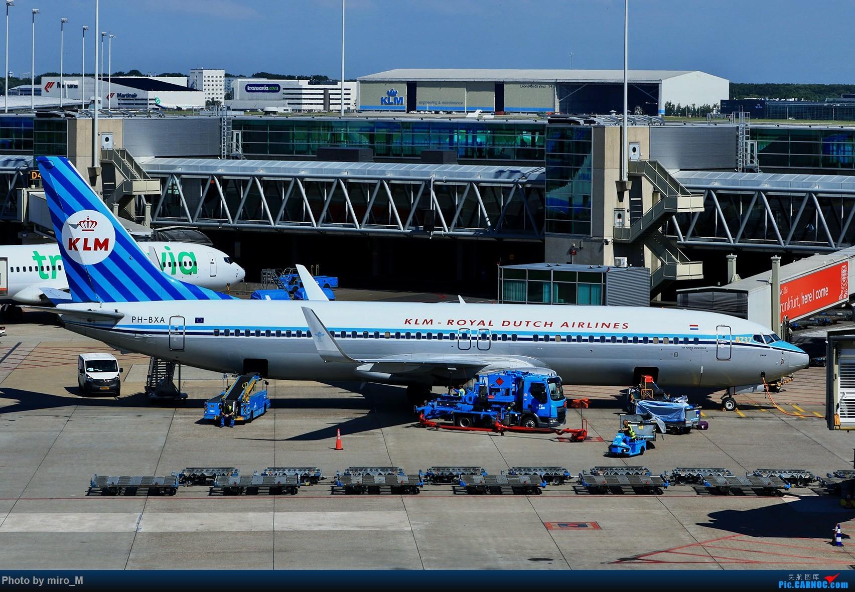 Re:[原创]欧洲浪了一圈,CS100,BAE146,fokker70等新老机型串着飞+ZRH,MUC,FRA,AMS,TLS拍机 BOEING 737-800 PH-BXA AMS