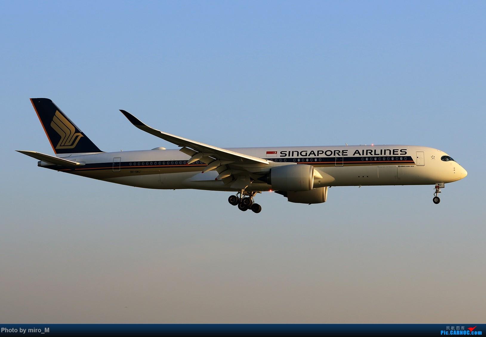 Re:[原创]欧洲小众机型体验之旅,附所到的机场拍机图片(中) AIRBUS A350-900 9V-SMJ AMS