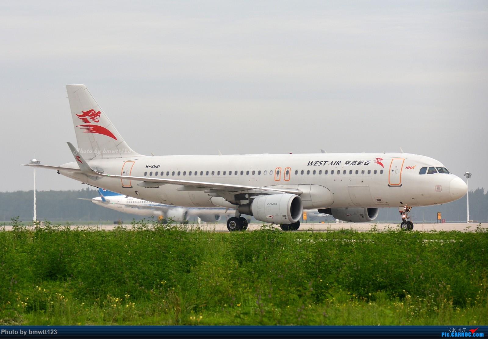 Re:[原创]【SHE沈阳】桃仙地面一组(45图)自带地景! AIRBUS A320-200 B-9981 中国沈阳桃仙国际机场