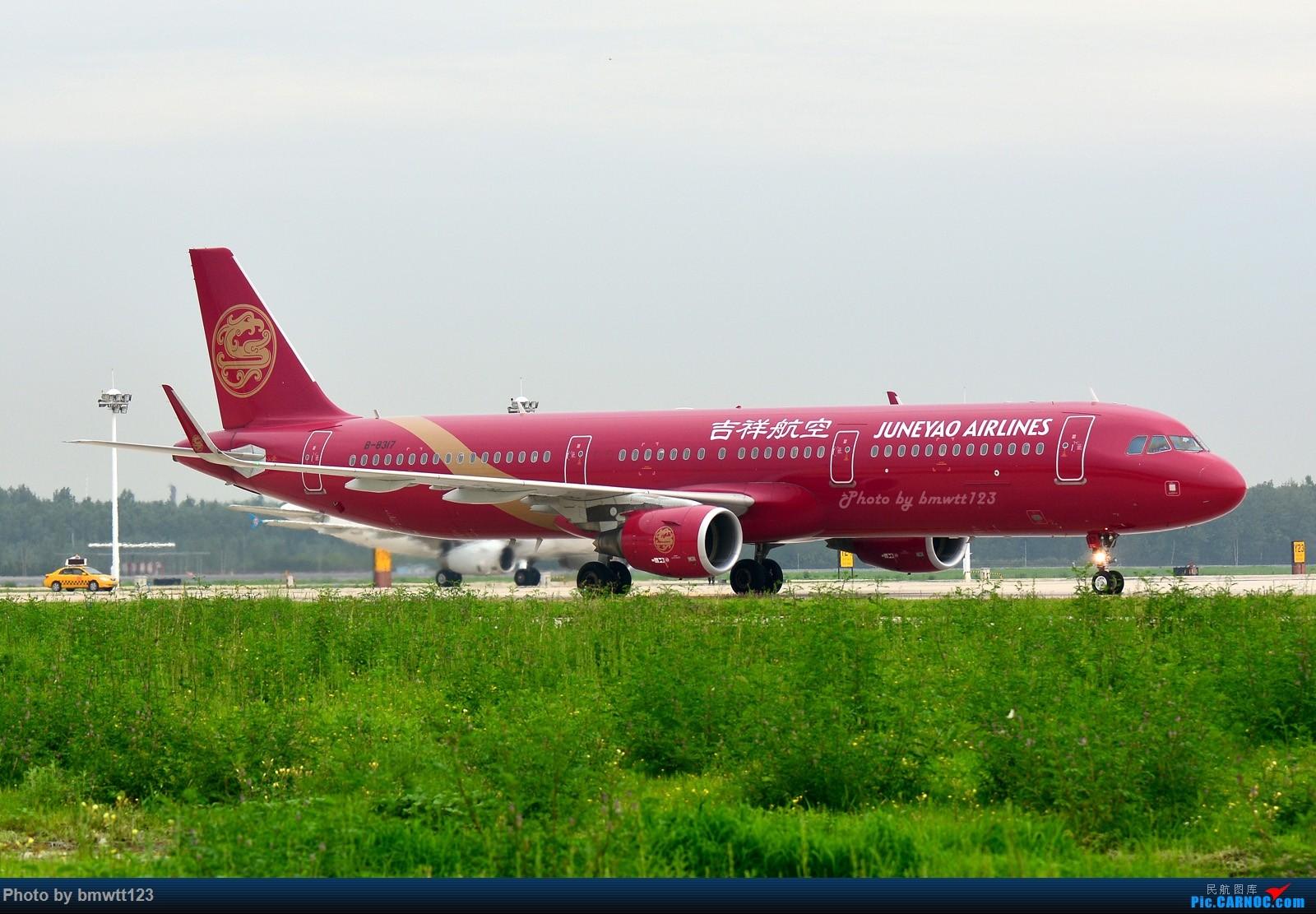 Re:[原创]【SHE沈阳】桃仙地面一组(45图)自带地景! AIRBUS A321-200 B-8317 中国沈阳桃仙国际机场