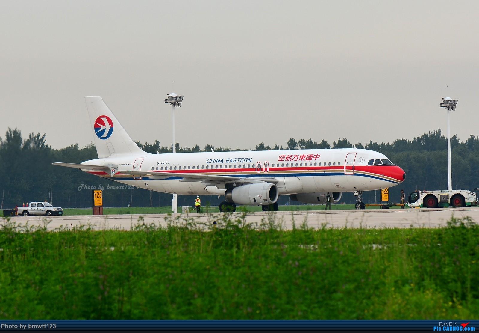 Re:[原创]【SHE沈阳】桃仙地面一组(45图)自带地景! AIRBUS A320-200 B-6877 中国沈阳桃仙国际机场