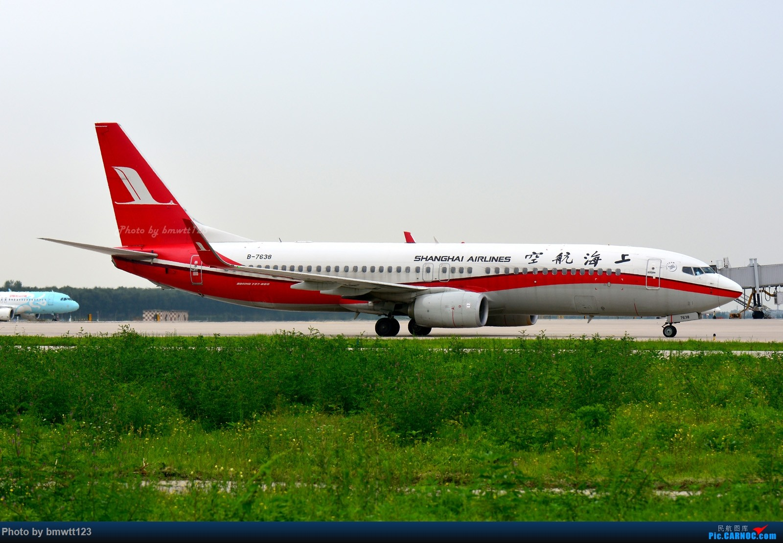 Re:[原创]【SHE沈阳】桃仙地面一组(45图)自带地景! BOEING 737-800 B-7638 中国沈阳桃仙国际机场