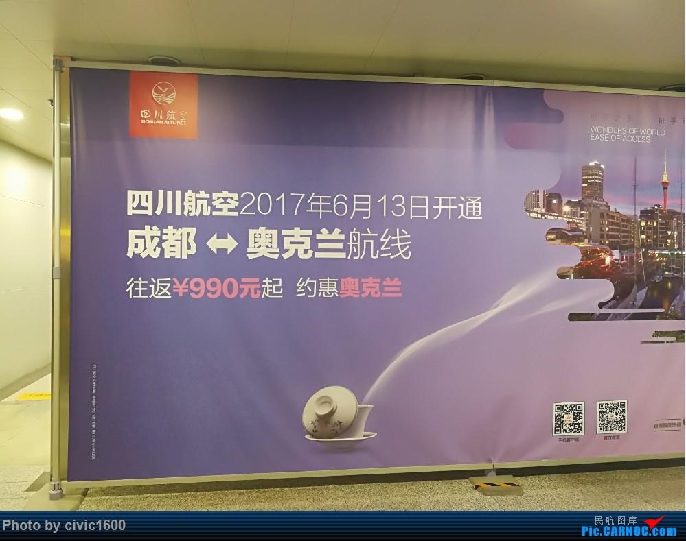 [原创]巨大代价换来的论坛首发 四川航空 CTU-AKL 往返游记