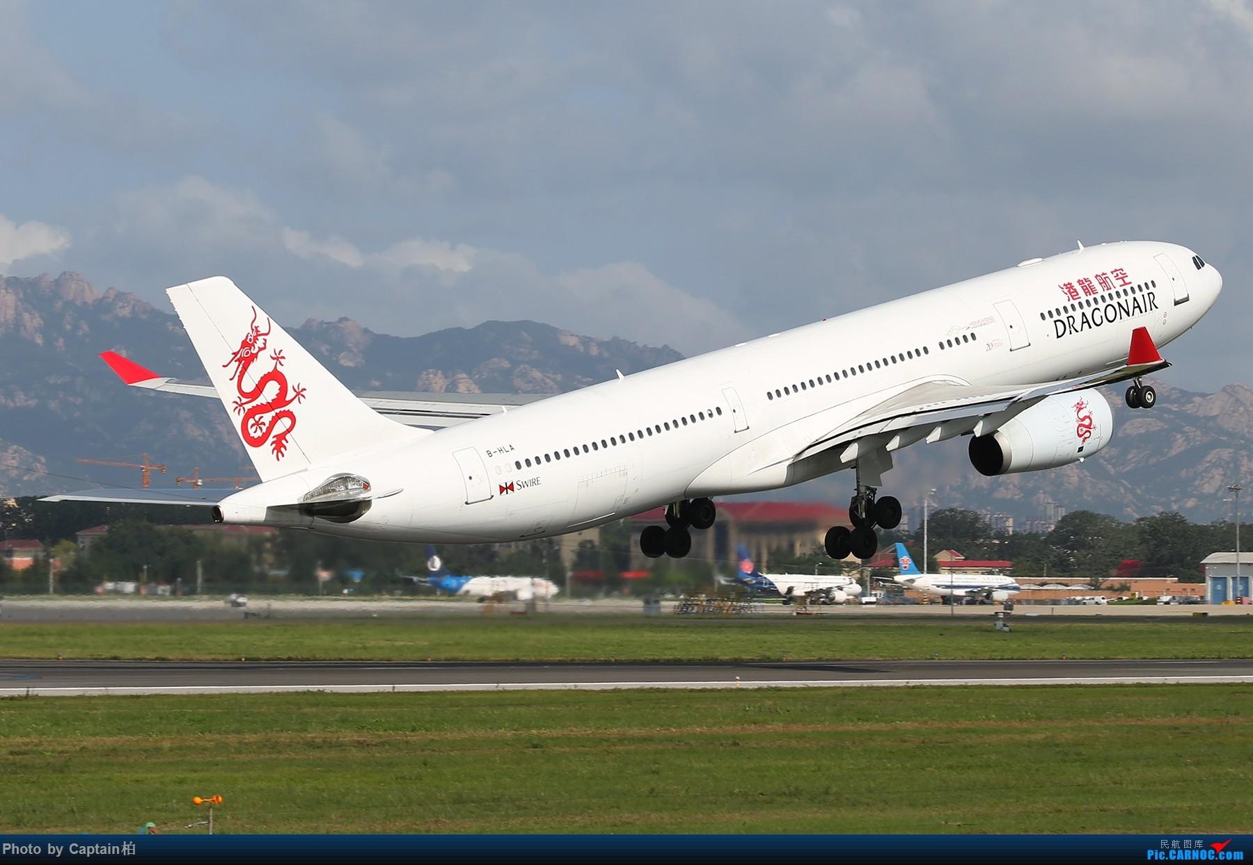 Re:[原创]青岛杂图 AIRBUS A330-300 B-HLA 中国青岛流亭国际机场
