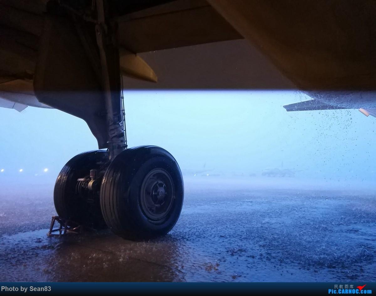 [原创](PVG)电 AIRBUS A320-200  上海浦东国际机场