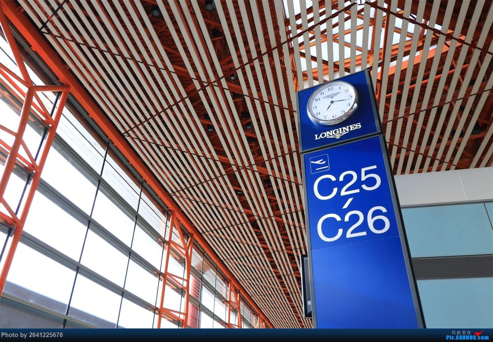Re:[原创]【和小周飞拍世界第5集】围着青海湖绕个圈,和我一起领略七色青甘+西安(7天,三段飞行+西宁/西安机场拍机) AIRBUS A319-100 B-6416 中国西宁曹家堡机场