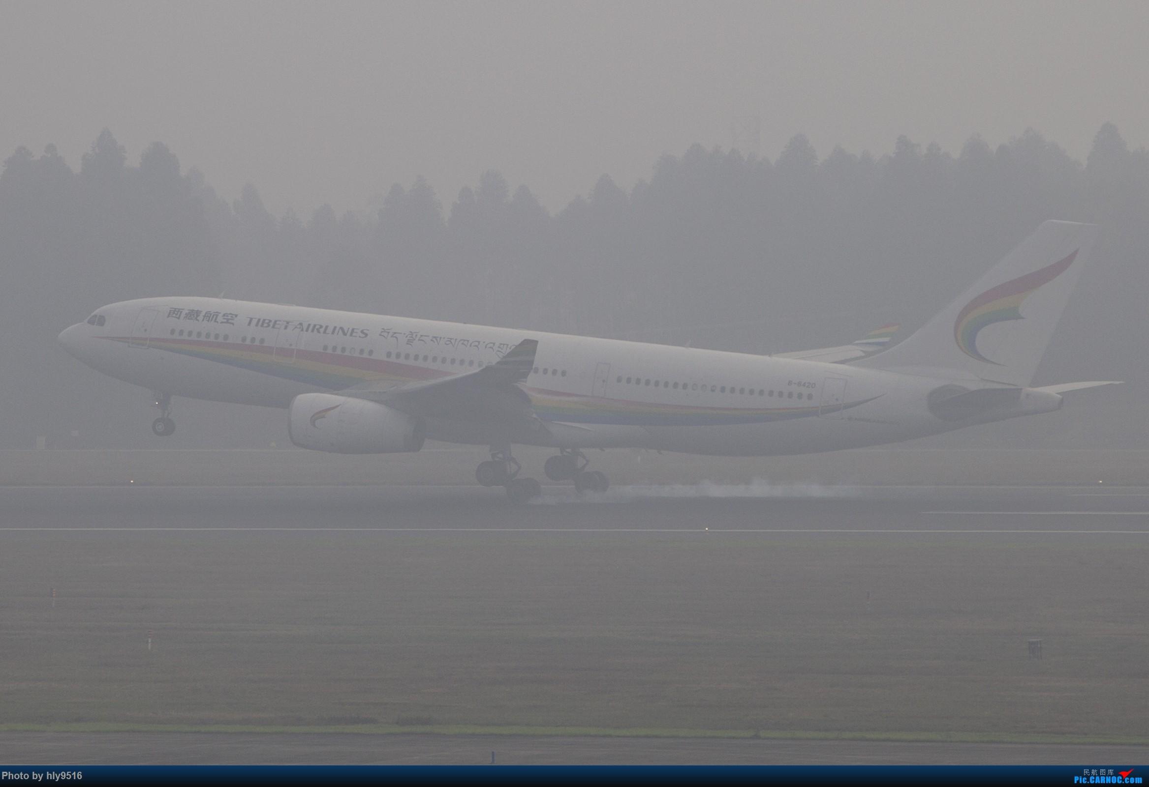 Re:[原创]【CTU】去年冬天老图一组,论成都的极致雾霾烂天 AIRBUS A330-200 B-8420 中国成都双流国际机场