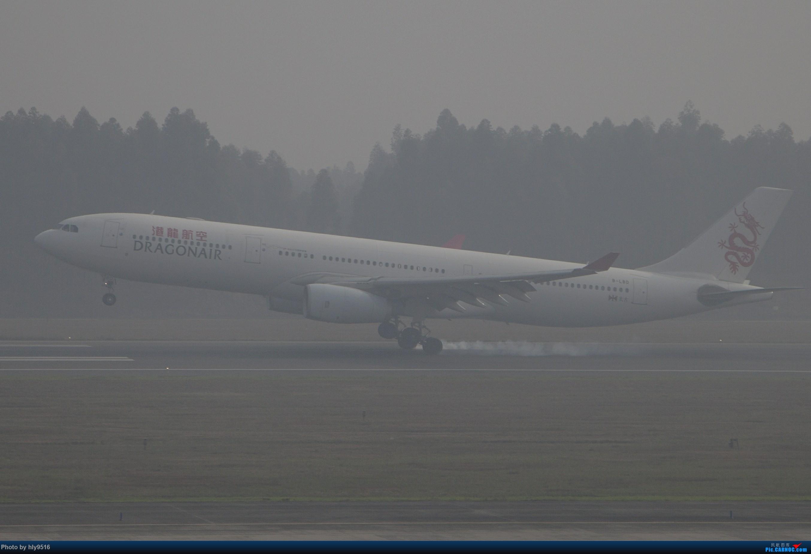 Re:[原创]【CTU】去年冬天老图一组,论成都的极致雾霾烂天 AIRBUS A330-300 B-LBD 中国成都双流国际机场