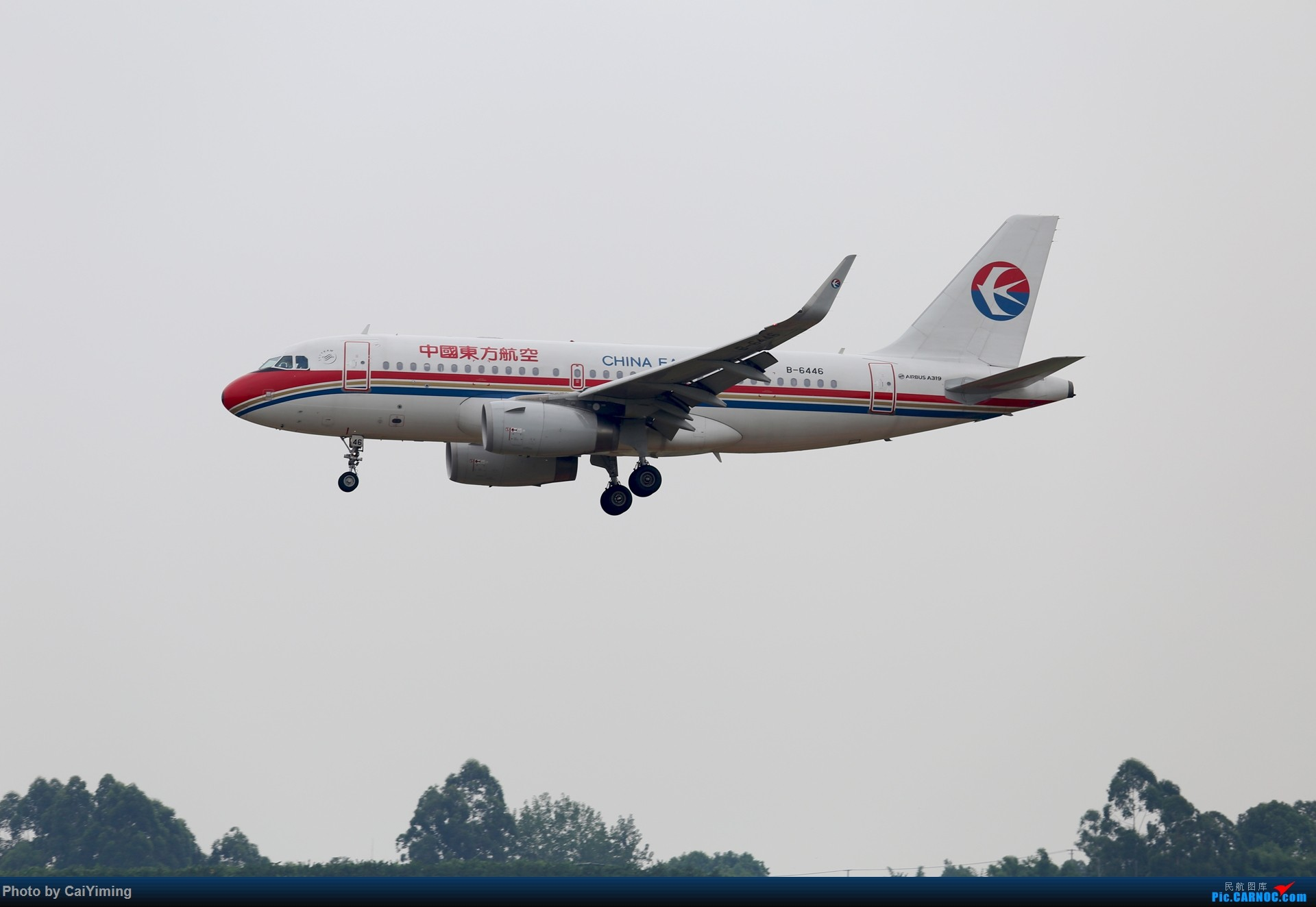 Re:[原创]成都双流水泥厂的日常 AIRBUS A319-100 B-6446 中国成都双流国际机场