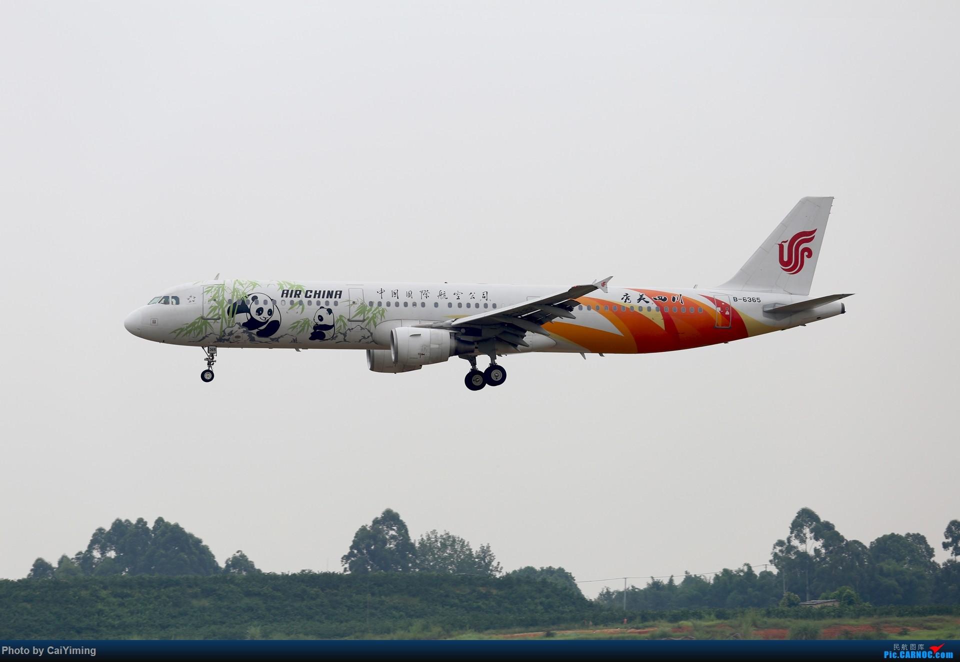 Re:[原创]成都双流水泥厂的日常 AIRBUS A321-200 B-6365 中国成都双流国际机场