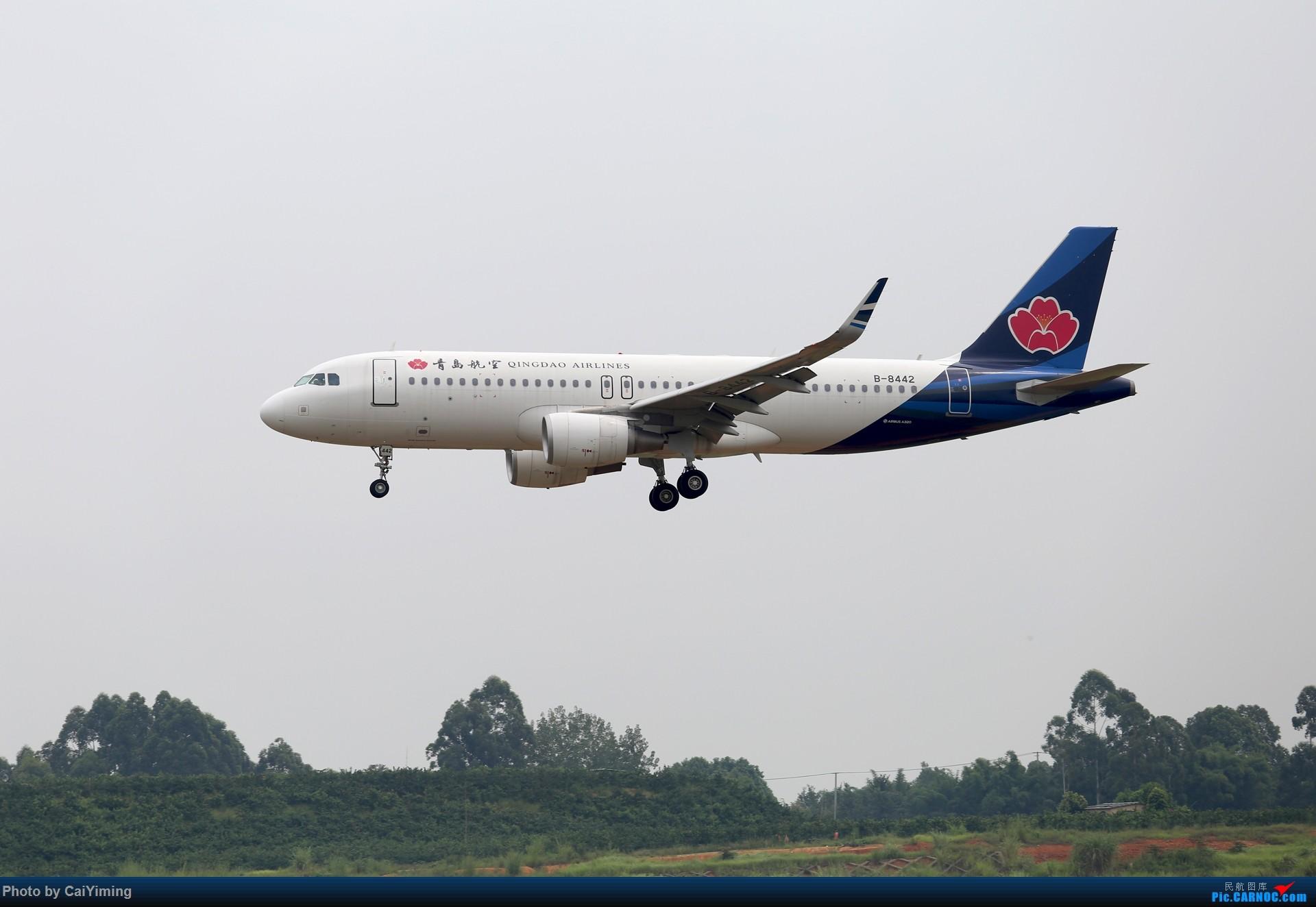 Re:[原创]成都双流水泥厂的日常 AIRBUS A320-200 B-8442 中国成都双流国际机场