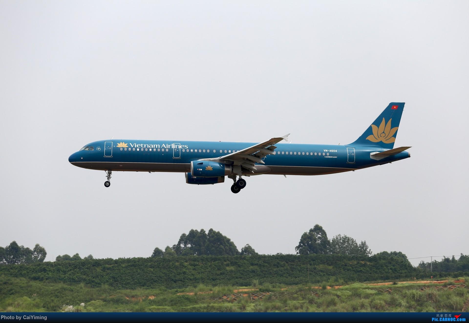 Re:[原创]成都双流水泥厂的日常 AIRBUS A321-200 VN-A604 中国成都双流国际机场
