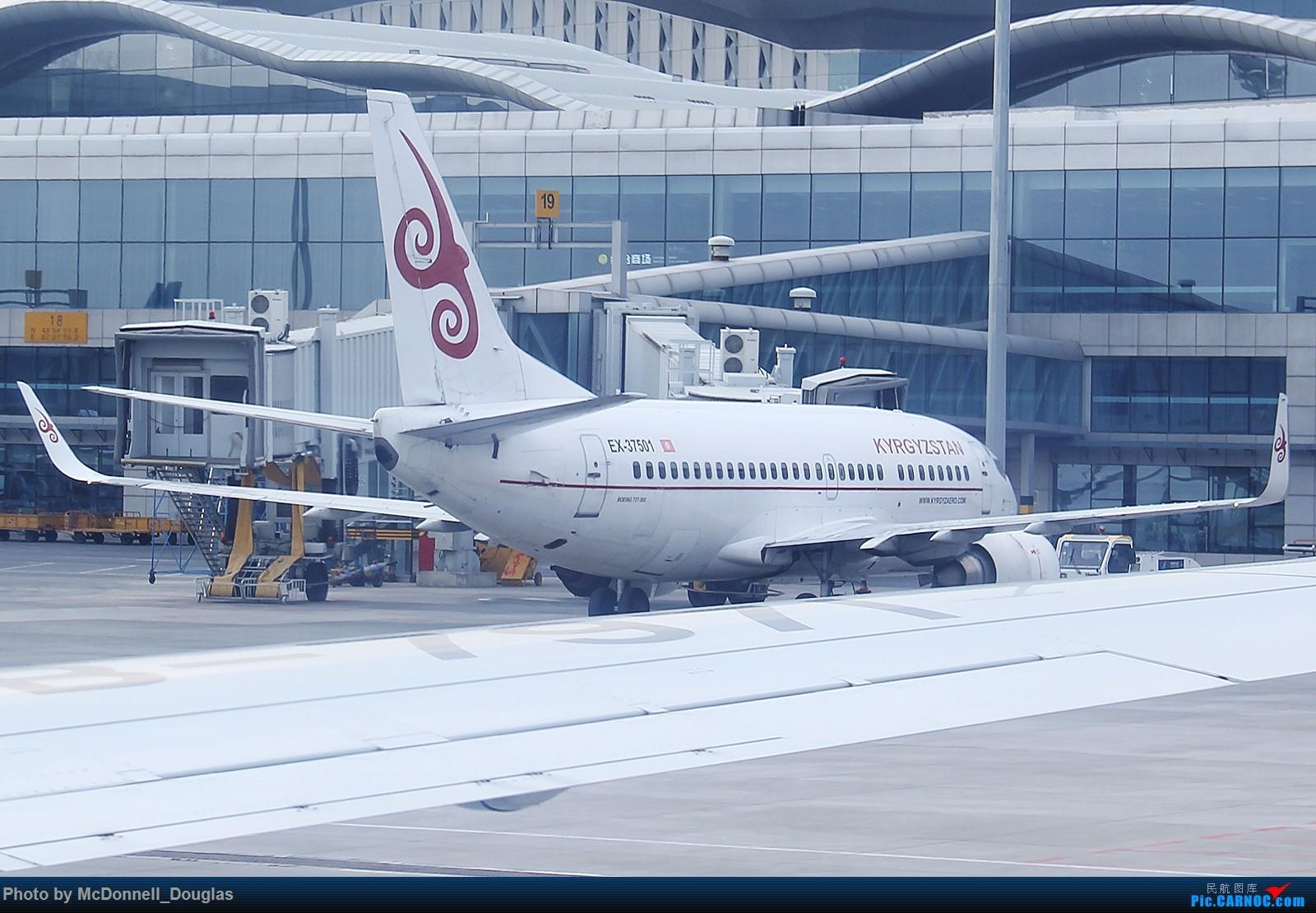 Re:[原创]【上海飞友会】【zc带你走天下(3)】再访祖辈年轻时工作的土地,父母年少时生活戈壁,跨越大半个中国去看新疆,回程小游蓉城(下) BOEING 737-59D EX-37501 中国乌鲁木齐地窝堡国际机场