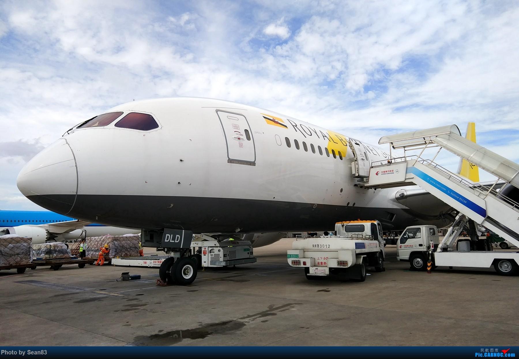 [原创](PVG 1800*)文莱航空B787-8 BOEING 787-8 V8-DLD 上海浦东国际机场