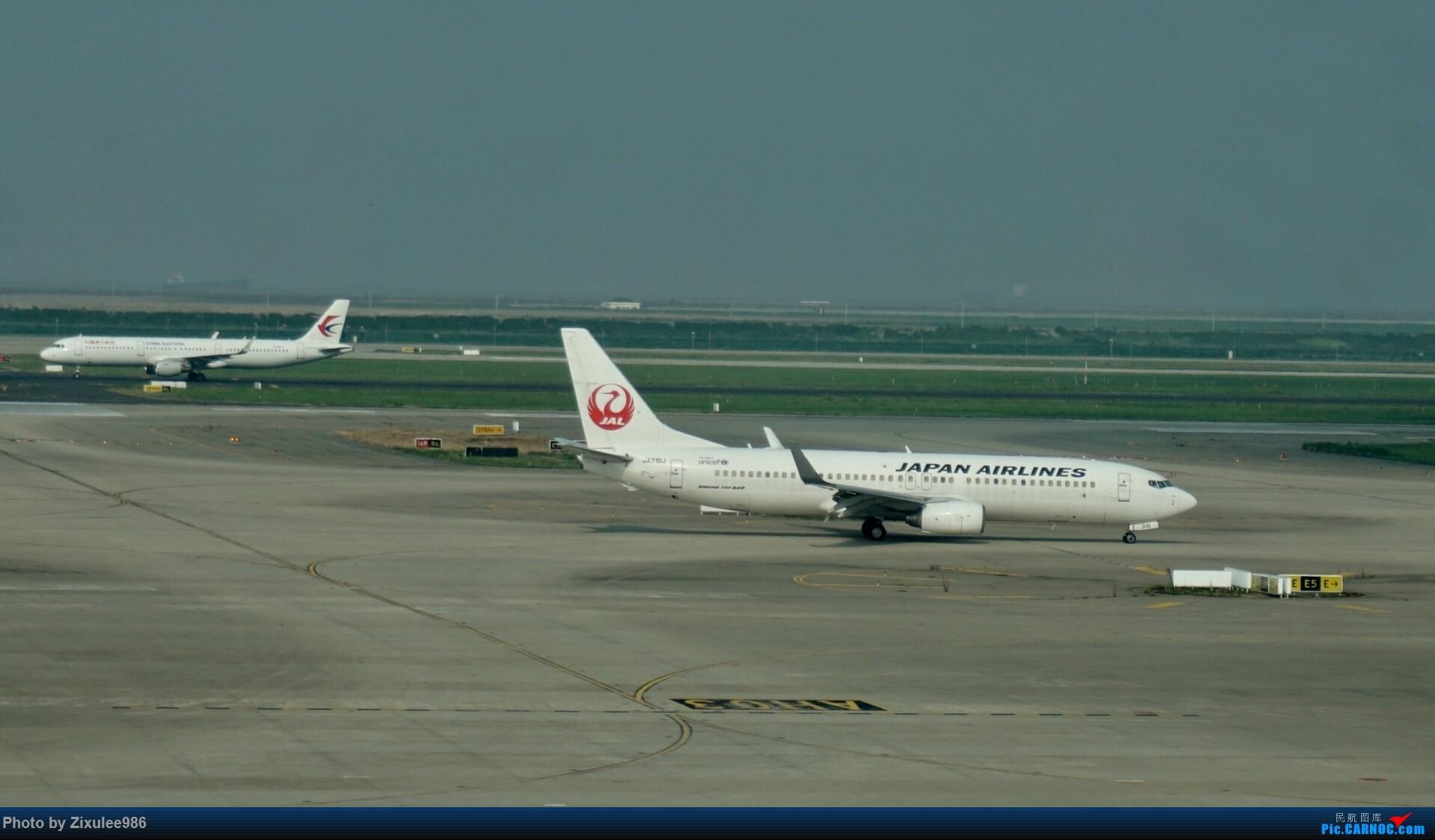 Re:[原创]加拿大21日游学之旅(一)~JJN-PVG-YYZ..(内含flightlog)~第一次发游记~多图缓更请谅解 BOEING 737-800 JA310J 中国上海浦东国际机场