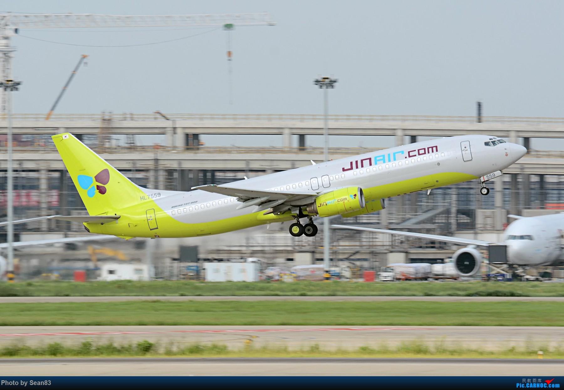 [原创](PVG 1800*)韩国真 BOEING 737-800 HL7559 上海浦东国际机场
