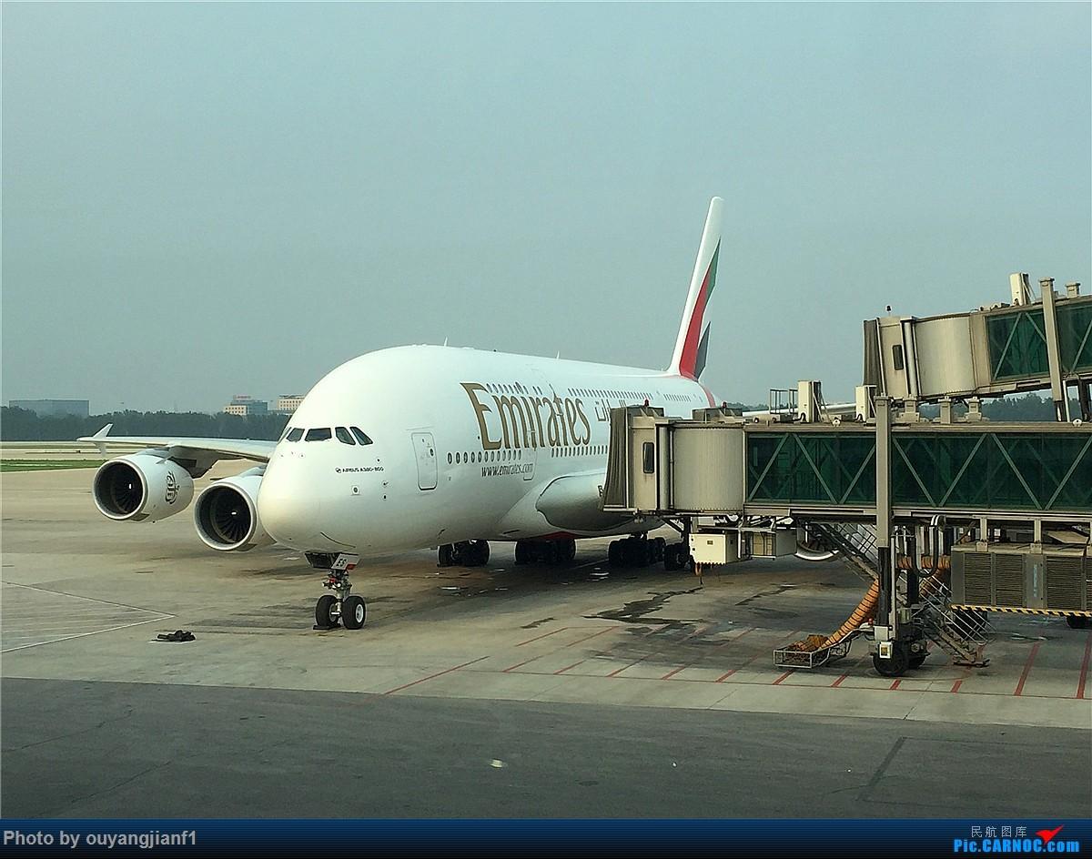Re:[原创]好久没有发游记了,正好前段时间去了趟阿联酋,那就发一篇阿联酋深度游的游记吧.... AIRBUS A380-800 A6-EES 中国北京首都国际机场
