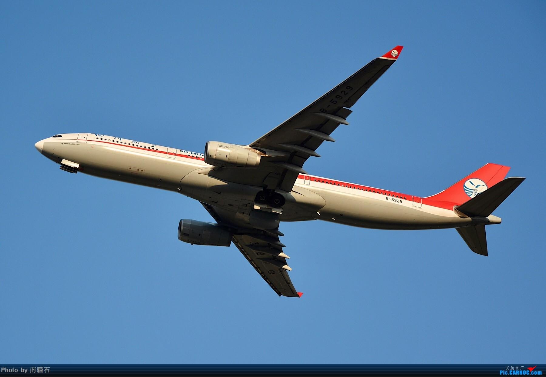 [原创]CTU 川农的主场当然不能没有漂亮的川妹子 AIRBUS A330-300 B-5929 中国成都双流国际机场
